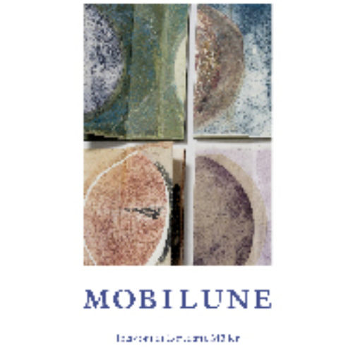 Copertina_mobilune_Web